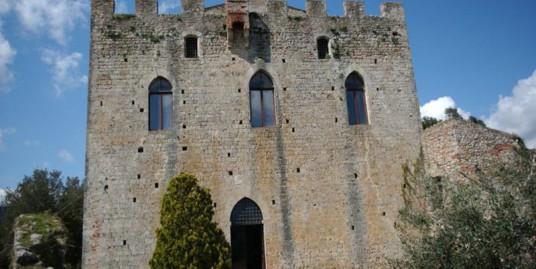 Medioeval Castle