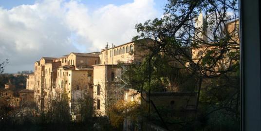 Siena pressi del Duomo